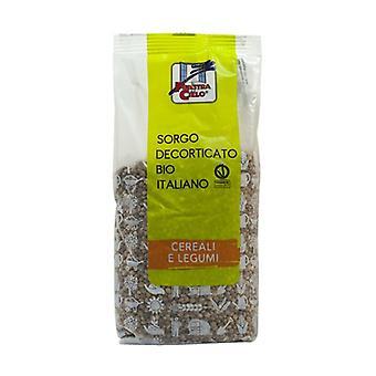 Italian hulled sorghum None