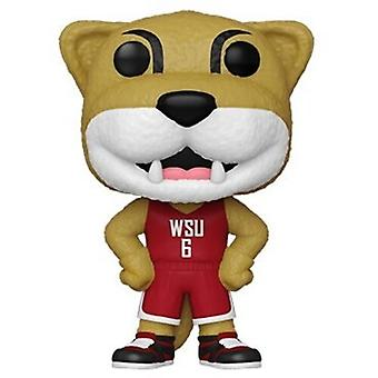 Wsu- Butch T Cougar USA Import