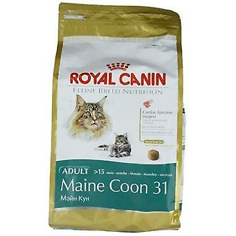 Royal Canin Maine Coon Cat secco cibo Mix 4 kg x 2 pack