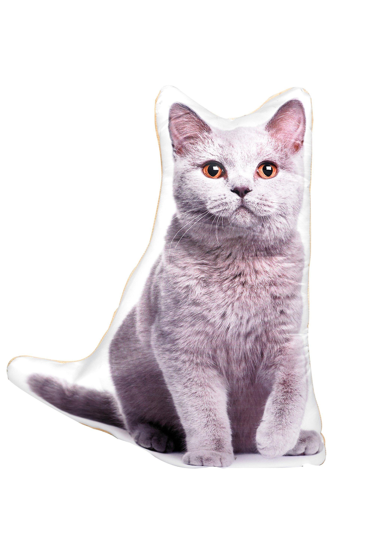 Adorable british blue cat shaped cushion