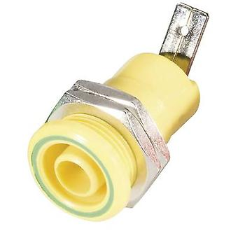 Schnepp BU 4600 ge Safety jack socket Socket, vertical vertical Pin diameter: 4 mm Yellow 1 pc(s)