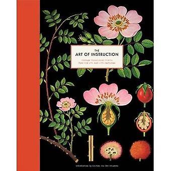 Art of Instruction by Katrien Van der Schueren - 9781452101118 Book