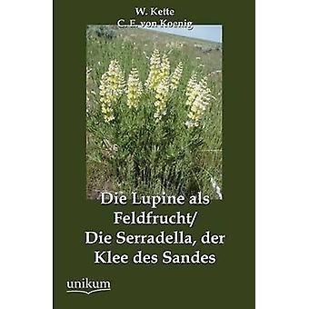 Die Lupine als FeldfruchtDie Serradella der Klee des Sandes av Kette & W.