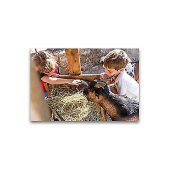 Broers en zussen met boerderij dieren Poster -Afbeelding door Shutterstock