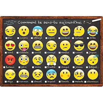 "Smart Poly French Immersion Chart, 13"" X 19"", Emoji, Comment Te Sens-Tu Aujourd'Hui ? (Wie fühlen Sie sich heute?)"