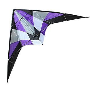 Professional Outdoor Fun Sports Storm Delta Dual Line Stunt Kite