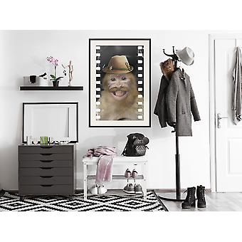 Poster - Dressed Up Monkey-30x45
