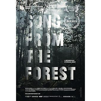 Song From the Forest [DVD] USA import