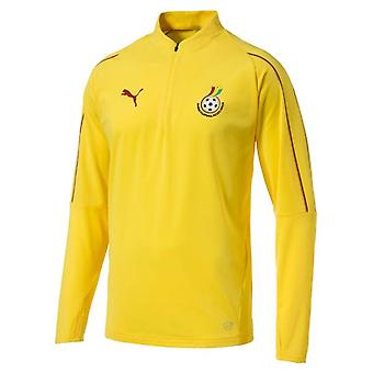 2018-2019 Ghana Puma 1/4 Zip Training Top (Dandelion)