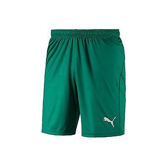 Puma Liga Σορτς Core 70343605 ποδόσφαιρο όλο το χρόνο παντελόνι άνδρες