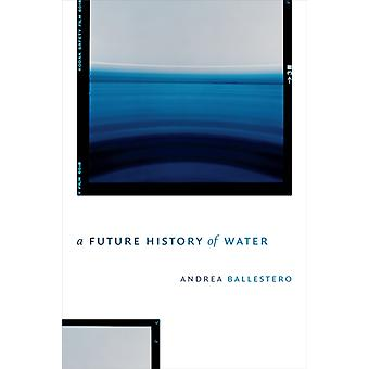 A Future History of Water by Andrea Ballestero