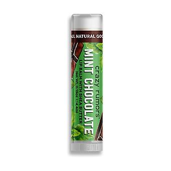 Chocolate Mint Lip Balm 4,2 g