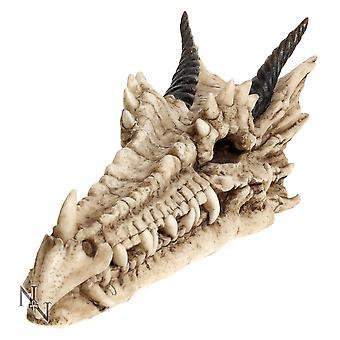 Draco Skull Incense Holder