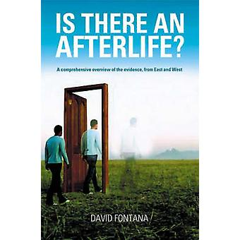 Is There an Afterlife  A Comprehensive Overview of the Evidence by David Fontana