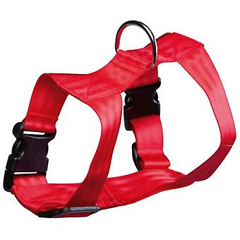 Arppe Nylon Face Dog Harness in Red (Dogs , Collars, Leads and Harnesses , Harnesses)