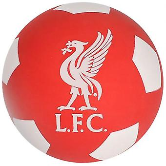 Liverpool Super Bouncy Ball
