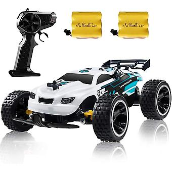 DZK RC Buggy Racing Car Kids RC Car, 2.4Ghz High Speed Remote Control Car, 1:18 2WD Toy Cars Bug