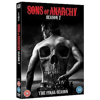アナーキーの息子たち:シーズン7 DVD