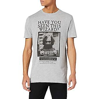 Springfield Camiseta Harry Potter T-Shirt, Medium Grey, M Man
