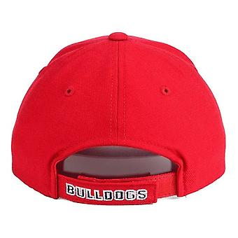 Fresno State Bulldogs NCAA Youth TOW