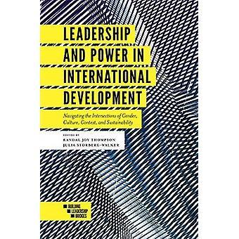 Leiderschap en kracht in de internationale ontwikkeling - navigeren de Int
