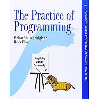 La práctica de la programación (informática profesional)