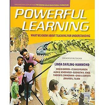 Lernen: Was wissen wir über den Unterricht für Verständnis