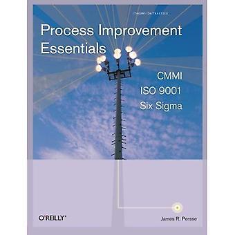 Processaa förbättring Essentials: CMMI, sex Sigma och ISO 9001