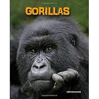 Gorillas (Heinemann Infosearch: Living in the Wild: Primates)