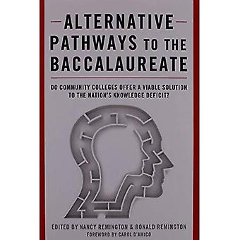 Alternative Pathways to the Baccalaureate: Do Community Colleges Offer a Viable Solution to the Nation's Knowledge Deficit?