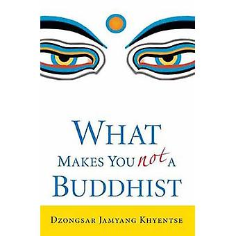 What Makes You Not a Buddhist by Dzongsar Jamyang Khyentse - 97815903