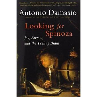 Looking for Spinoza Book