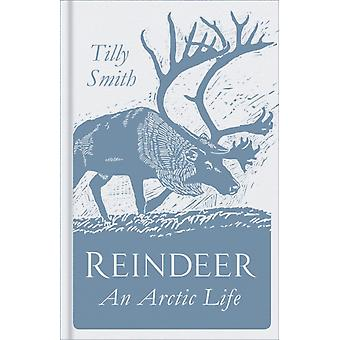 Reindeer by Tilly Smith