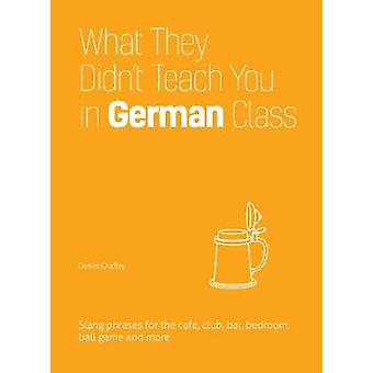 What They Didnt Teach You In German Class by Chaffey & Daniel