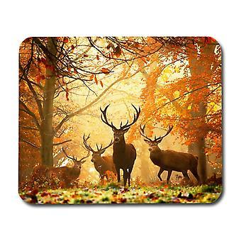 Almofada de rato de veado e outono