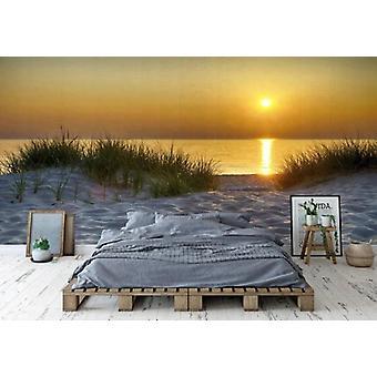 Wallpaper muurschildering duinen Lake Michigan