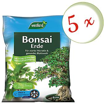 Sparset: 5 x WESTLAND® Bonsai Erde, 4 Liter