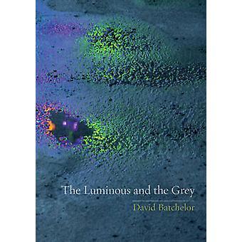 De lichte en de Grey door David Batchelor - 9781780232805 boek