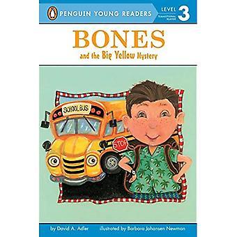 Bein og store gule Mystery (Bones (Lunde lett-å-lese))