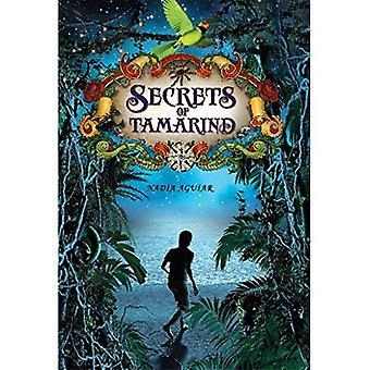 Geheimen van tamarinde (Boek van tamarinde)