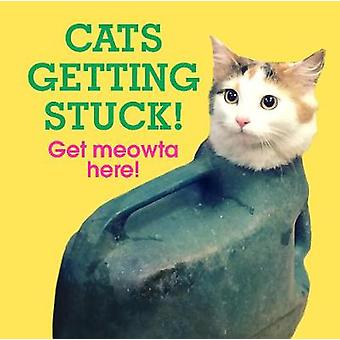 Cats Getting Stuck! by No Author Details - 9781785036309 Book