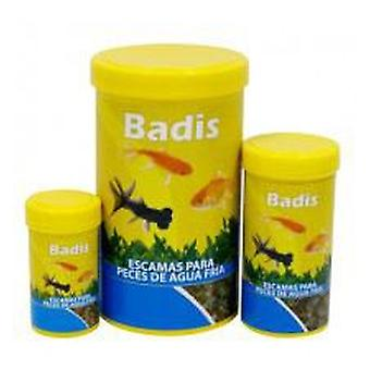 Badis Badis Cold Water Scale (Fish , Food , Ponds , Food for Pond Fish , Cold Water)