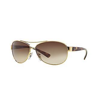 Ray-Ban RB3386 001/13 guld Arista/Brown gradient solglasögon