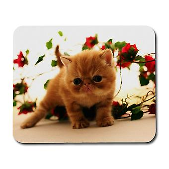 Exotic Cat Mouse Pad