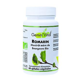 Biologische Rozemarijn Bud - Gemmotherapie 60 plantaardige capsules