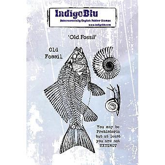IndigoBlu Gamle Fossil A6 Gummi Stempel