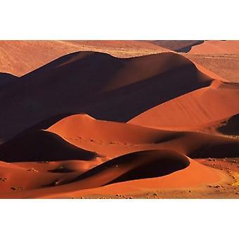 Dünen im Sossusvlei Namib-Naukluft Nationalpark Namibia Poster Print von David Wall