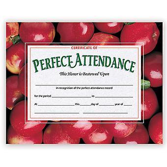 Certificate Of Perfect Attendance, 30/Pkg