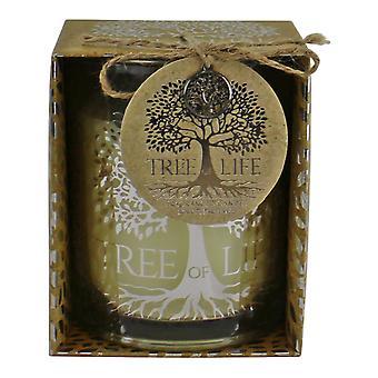 Livets träd doftljus i presentförpackning