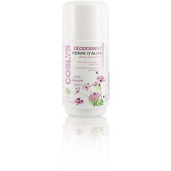 Coslys Deodorant Recharge Alum with Wild Flowers 50 ml